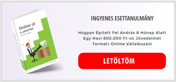 Innofit marketing esettanulmány